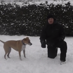 a man and his dog in the snow